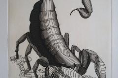 Scorpion--260mm-X-200mm