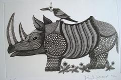 Rhinoceros-au-pique-boeuf-300mm-X-210mm