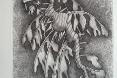 Hippocampe-feuille--284mm-X-204mm